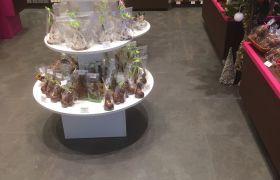 Magasin - Les Chocolats de Mélinda - Plozévet